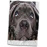 Hound dog hand towel 3 d rose