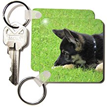 key chains german shephard puppy
