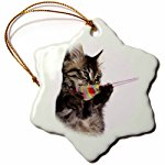 Kitten Star ornament